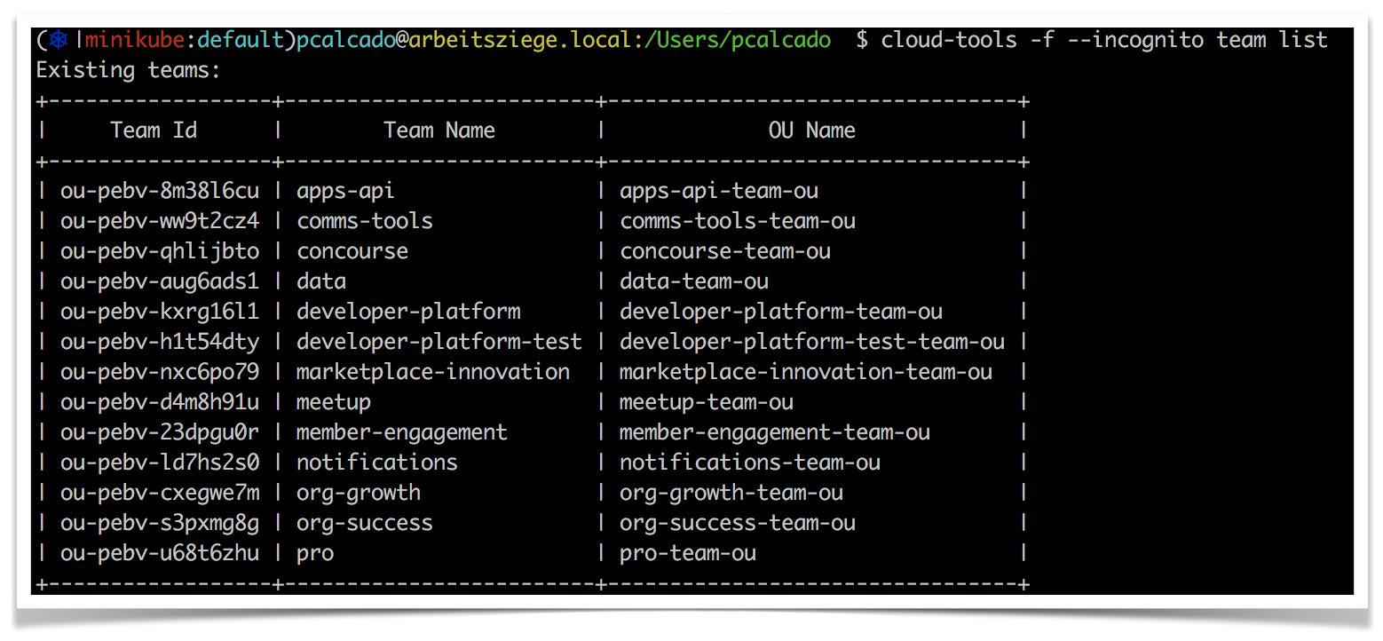 Guiding Principles for Developer Tools